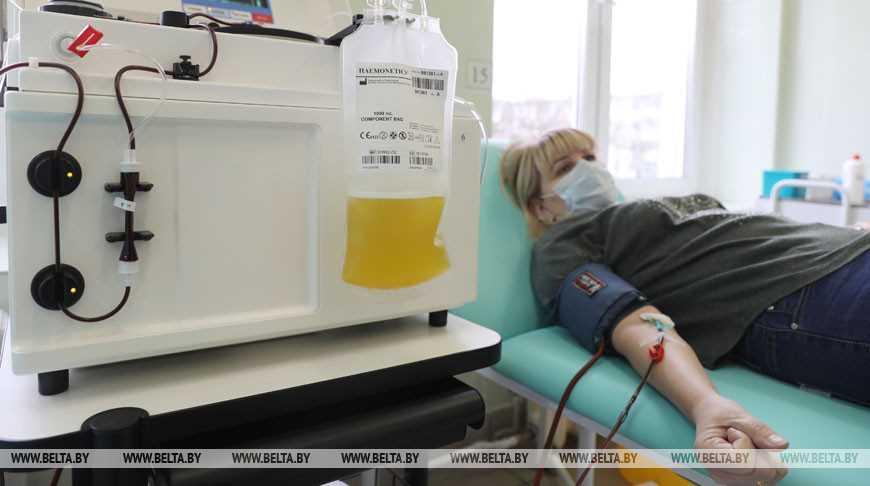 В Гродно донорами плазмы стали 17 человек, еще 20 готовятся к процедуре